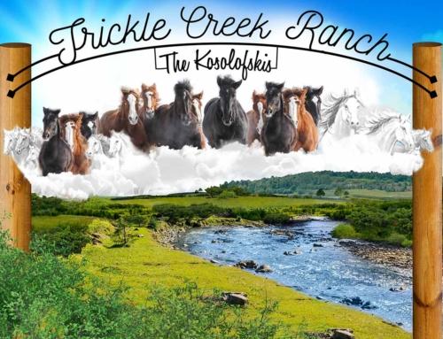 Trickle Creek Signage